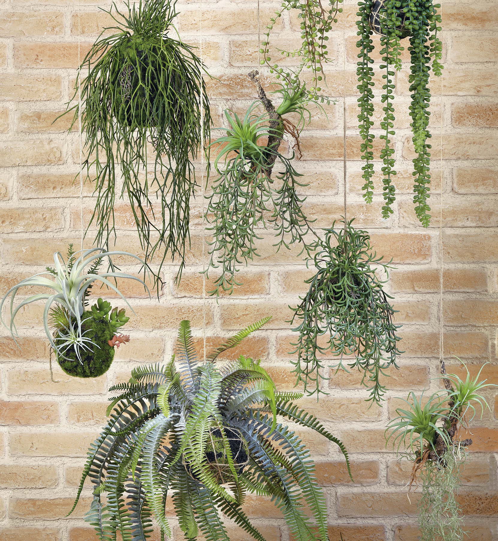 roots & greenery