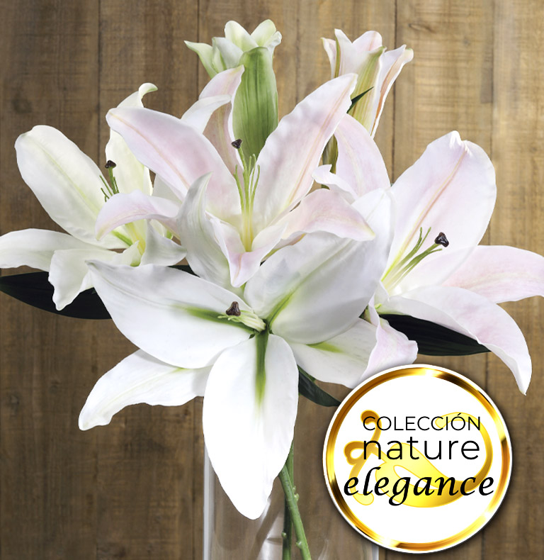 nature elegance