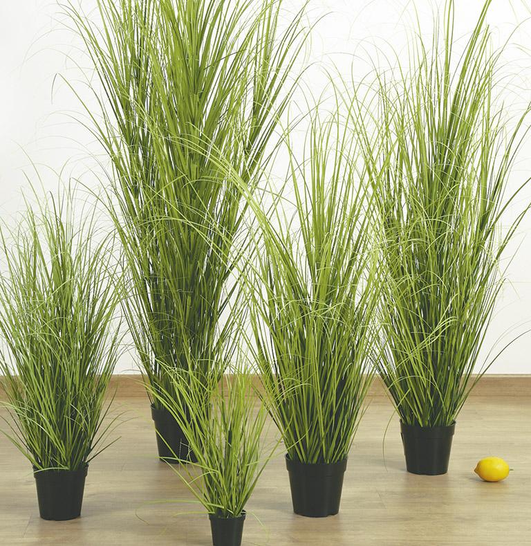 colección grass